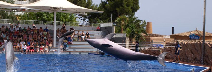 Activités et loisirs en famille à Antibes